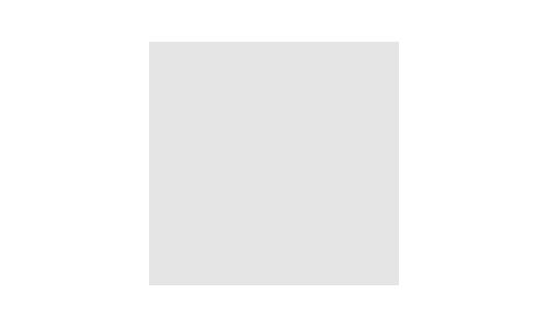 Rent Tesla in Europe
